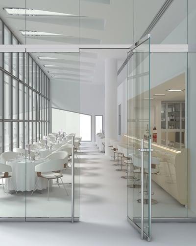 Frameless Glass Office Door