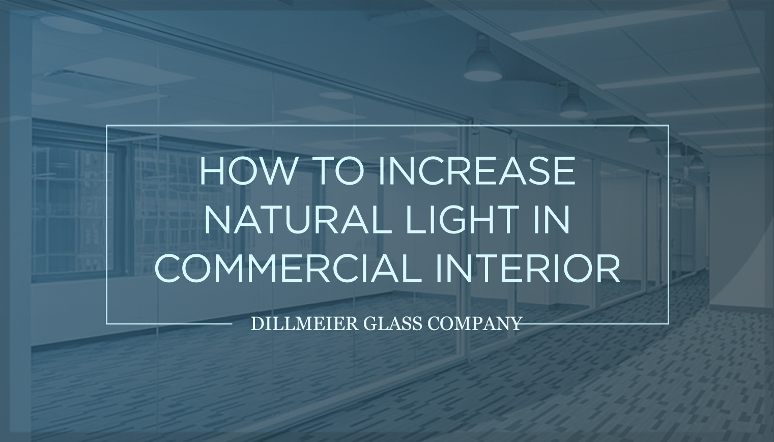 How to Increase Natural Light in Commercial Interiors