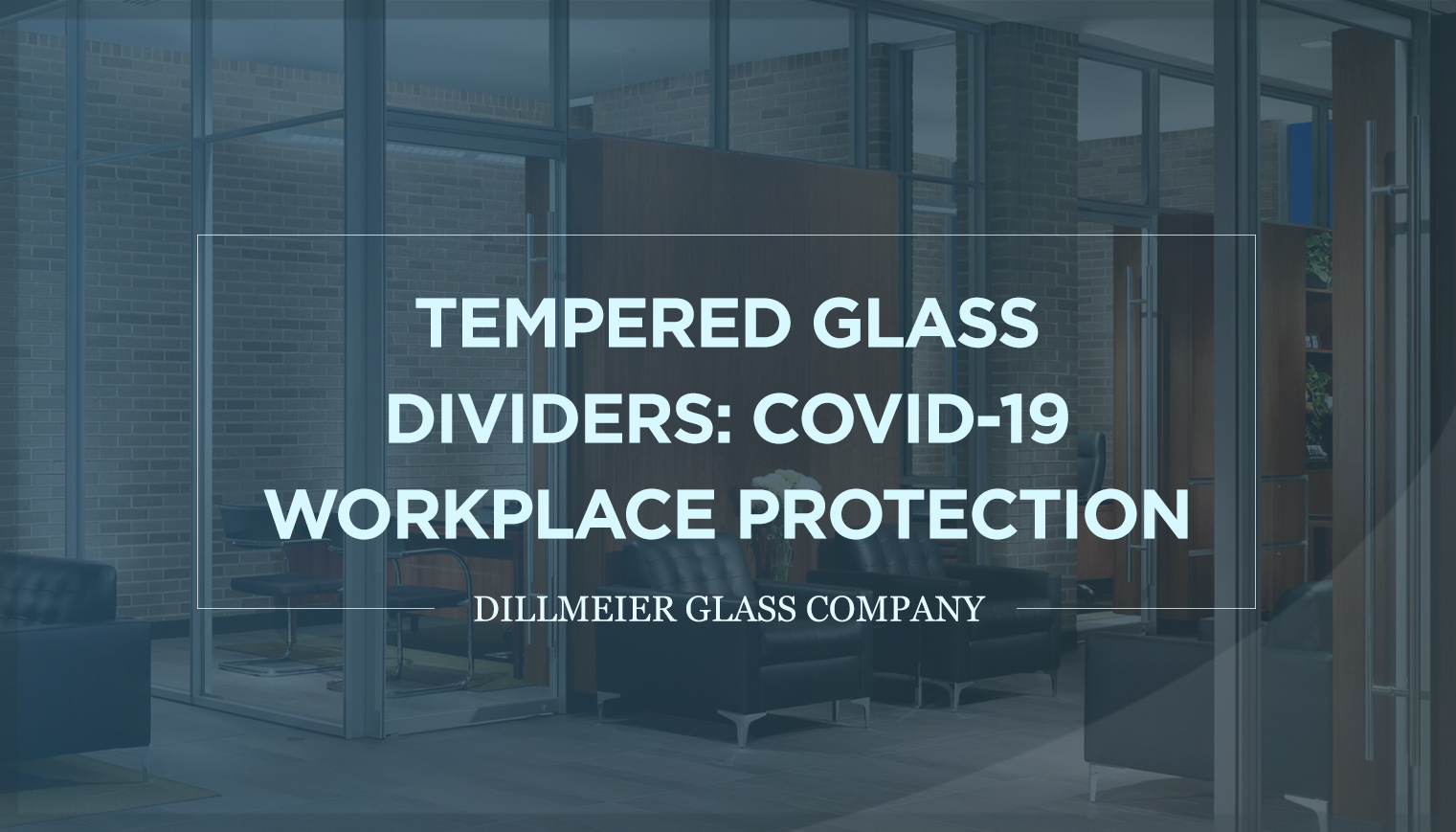 Tempered Glass Dividers: COVID-19 Workplace Protection
